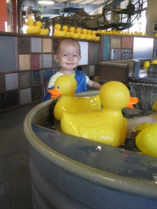 Rubber Duckie Exhibit at the Children's Museum.