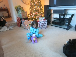 A purple brontosaurus (that thankfully she loved...Santa was worried.)
